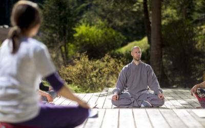 Gesundheit erleben – Vitalität für unsere Lebensenergie